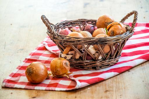 Free Stock Photo of onions in basket