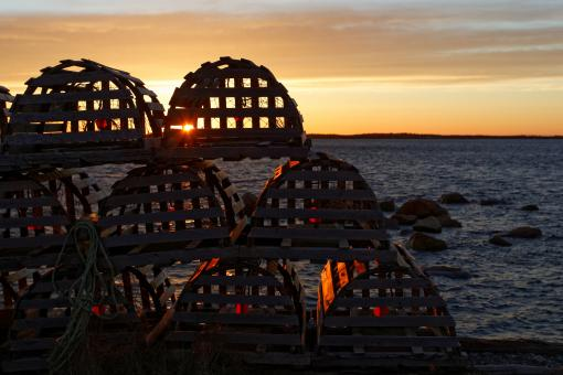 Free Stock Photo of Lobster Pots