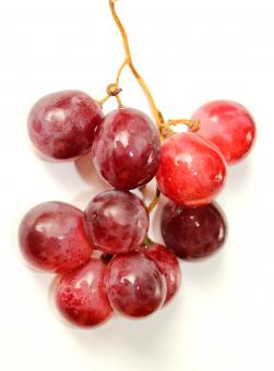 Free Stock Photo of Bunch of red globe grapes on white