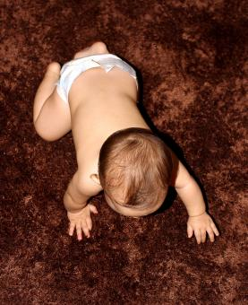 Free Stock Photo of Baby crawling