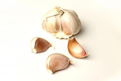 Free Stock Photo of Garlic on white background