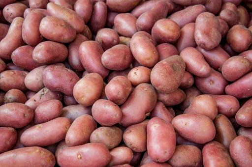 Free Stock Photo of Organic red potato pile sold on market