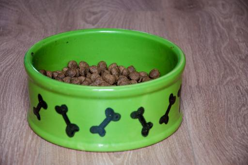 Free Stock Photo of Bowl with dry food for dog or cat