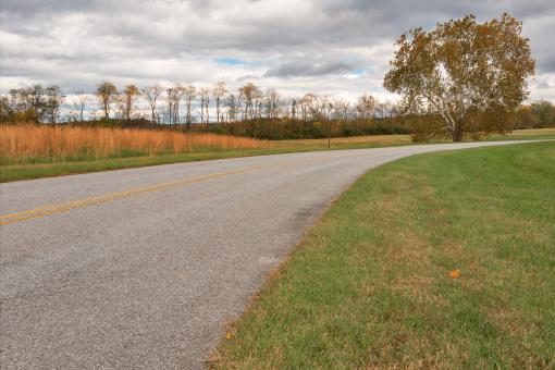 Free Stock Photo of Fort Frederick Road