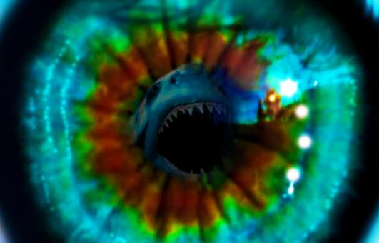 Free Stock Photo of Great white shark attack eye reflection