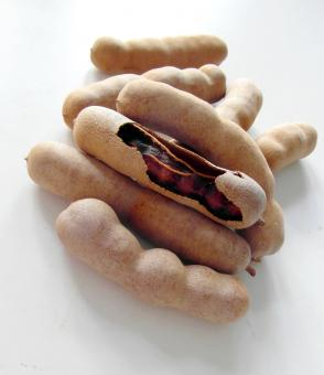 Free Stock Photo of Tamarind Fruits