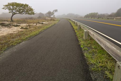 Free Stock Photo of Misty Assateague Route - HDR