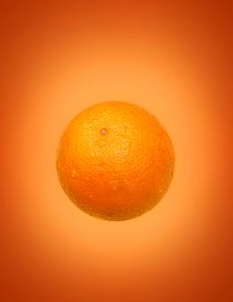 Free Stock Photo of Orange (Fruit) on Orange (Background)