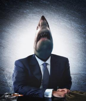 Free Stock Photo of Greedy businessman as a shark