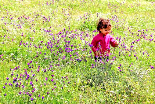 Free Stock Photo of Sweet little child in a meadow with wild purple spring flowers