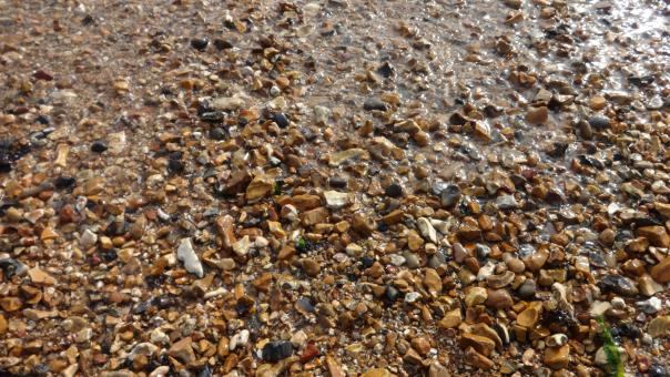 Free Stock Photo of Pebbles at sea shore