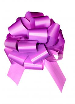 Free Stock Photo of Violet bow