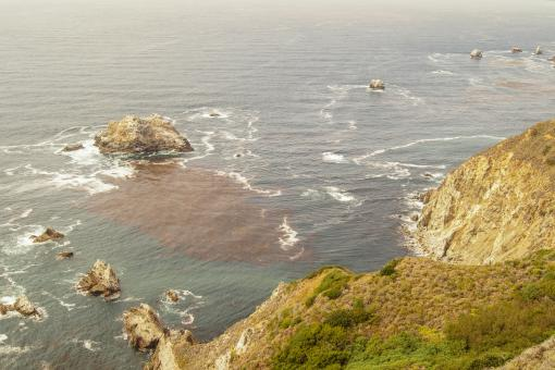 Free Stock Photo of Pacific Coast