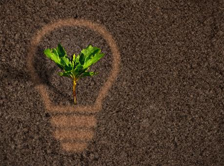 Free Stock Photo of Green plant sprout growing within a lightbulb silhouette on soil