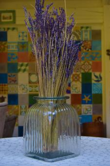 Free Stock Photo of Lavender in a glass vase