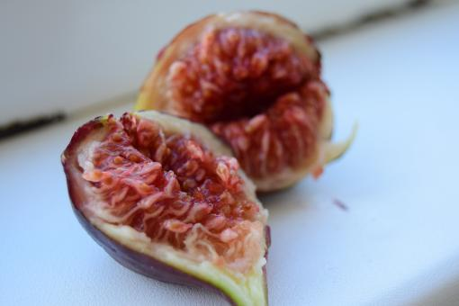 Free Stock Photo of Figs