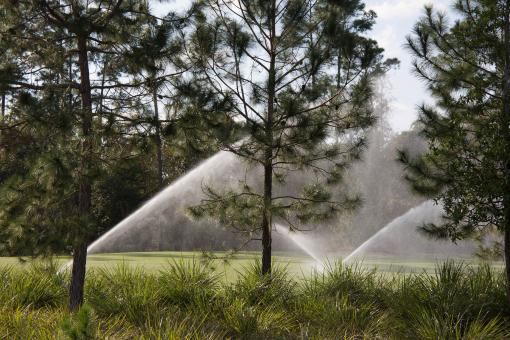 Free Stock Photo of Sprinklers on a lawn with trees
