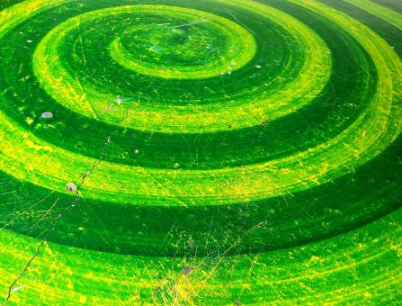 Free Stock Photo of Green Spiral Background