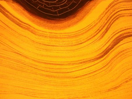 Free Stock Photo of Orange Wood Grain Background