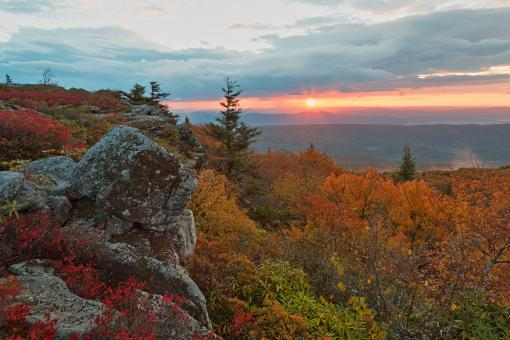 Free Stock Photo of Autumn Dolly Sods Sunrise - HDR
