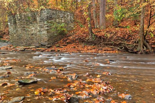 Free Stock Photo of Rustic Fall Creek - HDR