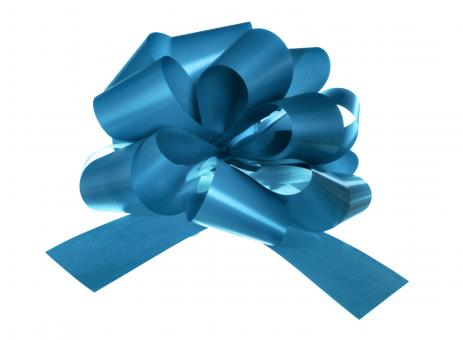 Free Stock Photo of Blue Bow