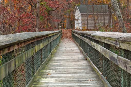 Free Stock Photo of Rustic Autumn Boardwalk - HDR