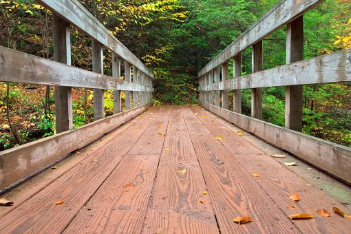 Free Stock Photo of Autumn Boardwalk Bridge - HDR