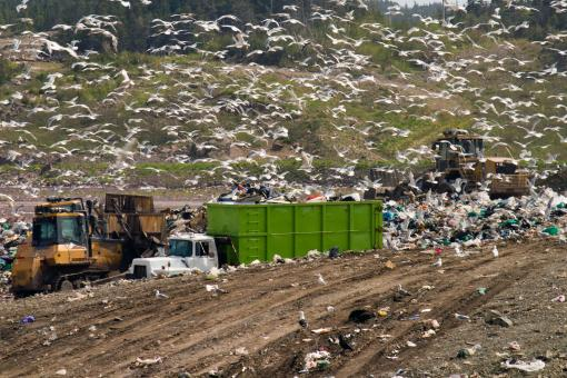 Free Stock Photo of Landfill Equipment