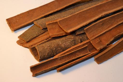Free Stock Photo of Cinnamon bark