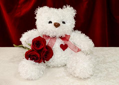 Free Stock Photo of White teddy bear with red roses