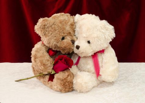 Free Stock Photo of Teddy bear gives a red rose to a special one