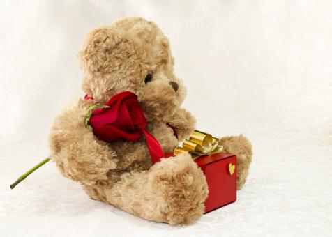 Free Stock Photo of Brown teddy bear with a rose and a gift