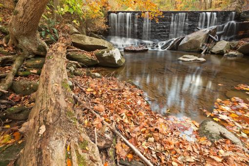 Free Stock Photo of Rock Run Autumn Falls