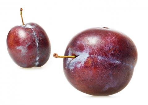 Free Stock Photo of plums