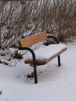Free Stock Photo of Park bench with snow