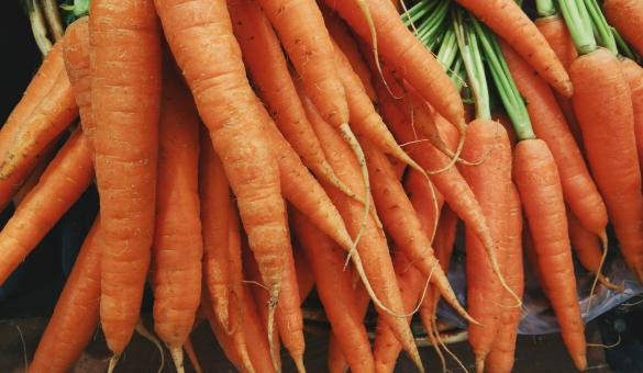 Free Stock Photo of Group of Carrots