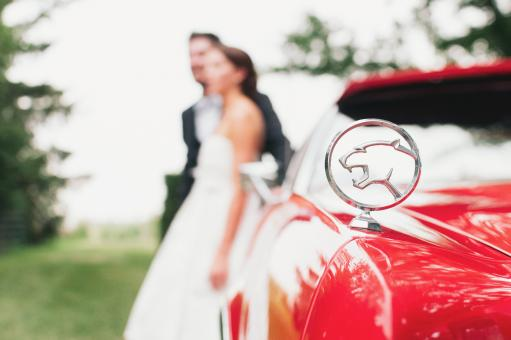 Free Stock Photo of Wedding