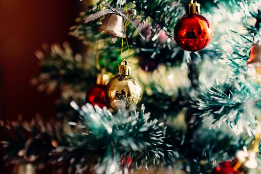 Free Stock Photo of Christmas Tree
