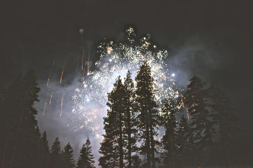 Free Stock Photo of Fireworks in the Woods
