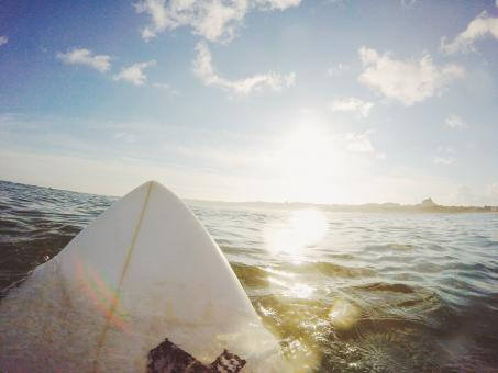Free Stock Photo of Surf Board