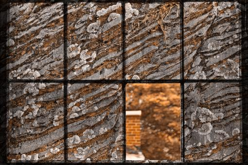 Free Stock Photo of Petrified Window