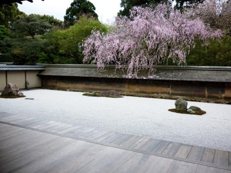 Free Stock Photo of Japanese Rock Garden