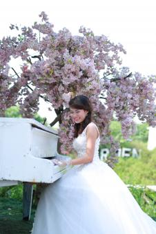 Free Stock Photo of Bride playing the piano