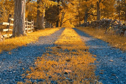 Free Stock Photo of Gold Gravel Road - HDR