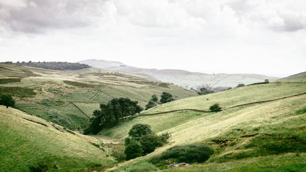 Free Stock Photo of Curvy Landscape