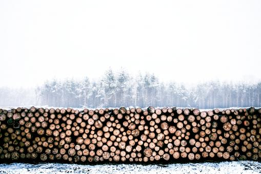 Free Stock Photo of Logs