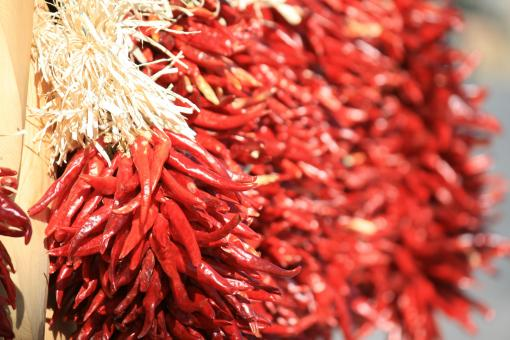 Free Stock Photo of Red Chilies