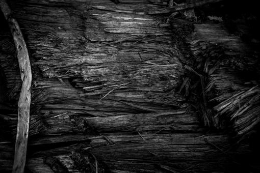 Free Stock Photo of Burned Wood Texture