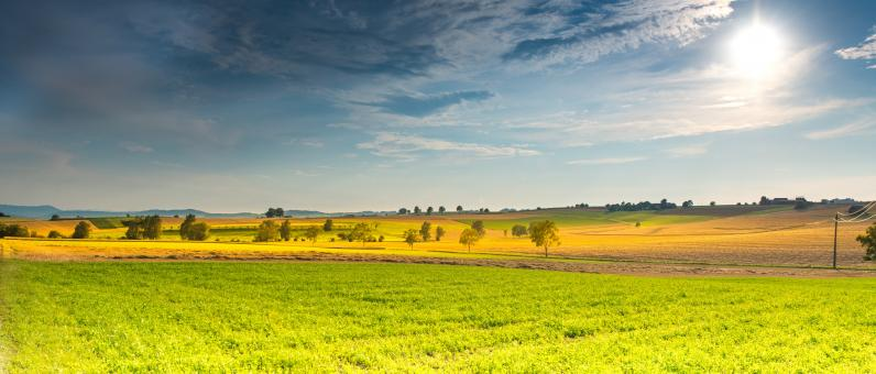 Free Stock Photo of Agricultural Lands